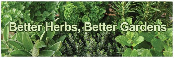 Better Herbs, Better Gardens