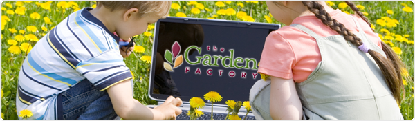 The Garden Factory Plant & Garden Center - Award Winning Garden Center in Rochester, NY